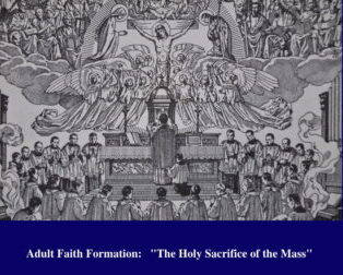 """""""The Holy Sacrifice of the Mass""""Study Guide & Audio Recordings"""